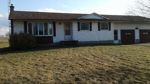 COMING SOON - 40 year old bungalow