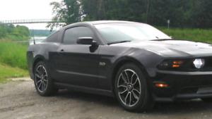 Mustang gt Premium