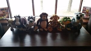 Webkinz and other stuffies