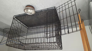Dog crate- Top Paw