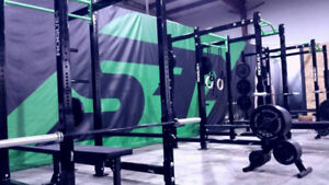 ROGUE Power Racks (Pull Up Bars & Plate Storage Included)