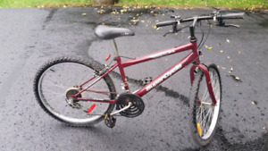 """24"""" Youth mountain bike for sale"""