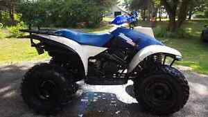 Trail boss 250 2wd with reverse and electric start