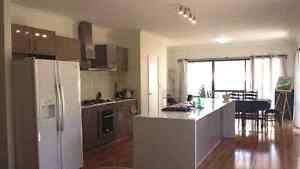 Spacious single room - 3 min to Murdoch station Kardinya Melville Area Preview