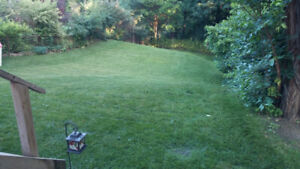 Property Maintenance in North York Lawn Mowing Lawn Care