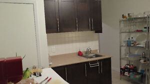 2 or 3 Bedroom Apt. Plateau, Renovated, Parking available