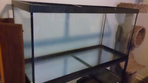 100 gallon aquarium, stand, and cage hood for $150 or best offer