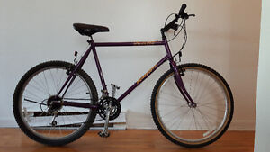 PRICE DROP - Specialized Rockhopper 1993 - great condition!