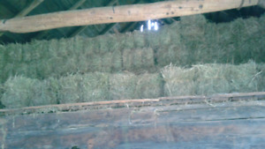 Hay for sale in Hanmer