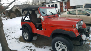 1976 Jeep CJ Other