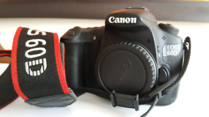 CANON EOS 60D BODY - mint condition 450$!