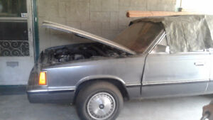 1984 Dodge Aries Station Wagon for parts