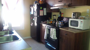 Downtown 2 Bedroom - Washer/Dryer