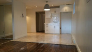 Super bel appartement tout rénové 4 1/2 à Chomedey, Laval