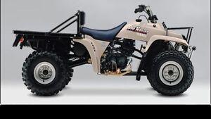 Yamaha Pro Hauler 1989