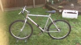 "Carrera 852 Alibi Mountain Bike (20"" Frame, 26"" Wheels, 21 Gears)"