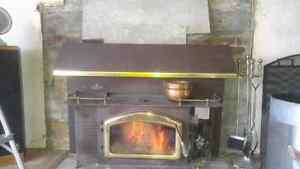Napolean insert wood burner