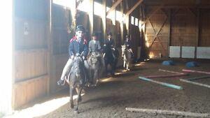 summer horse camp