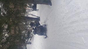 08 Arctic cat f1000