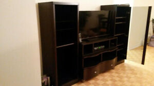 storage cabinet for television and entertainment units