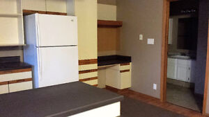 Large 3 Bedroom Duplex with Double Car Garage Available Sept 1