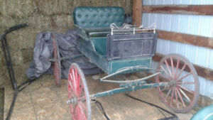 Horse Buggy / Carriage