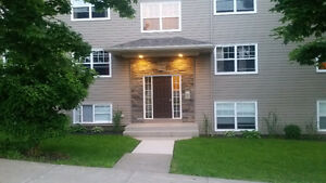 Sunny & Spacious, New 4 Bdrm 2 Bath on Robie Street -  Sept 1st.