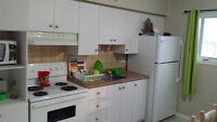 Orleans - 2 bedroom apartment for rent, available august 1st