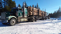 Logging truck Driver Wanted