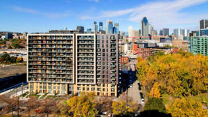 1 Bedroom (CAC) 3 1/2 New Furnished Condo in Griffintown +Garage
