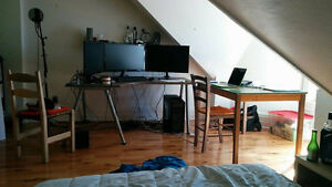 Newly Renovated Downtown Core / U of T 4 BDRM Apartment