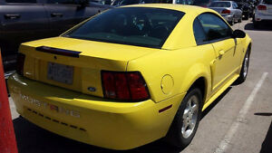 2003 Ford Mustang very clean Kitchener / Waterloo Kitchener Area image 2