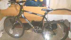 Giant 21 Speed Mountain bike