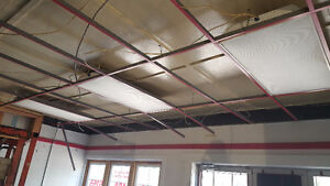 19 - Used 2' x 4' T-bar Fluorescent light fixtures with lights.