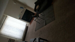 ROOM AVAILABLE IN PARTIALLY FURNISHED APARTMENT