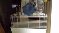 Chinchilla, Guinea Pig or Degu Cage and Accessories