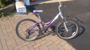 """Girl's 24"""" Trek Mountain Bike"""