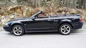 2002 MUSTANG GT CONVERTIBLE *OPEN TO POSSIBLE TRADES*