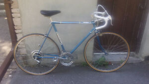 1970's Road Bike (Royal Knight)