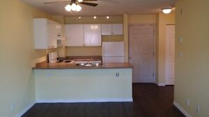 Open Kitchen 1bdrm with laminate and tiles - June 1