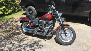 2009 Harley Fatbob -Reduced