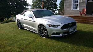 Convertible Mustang Like New
