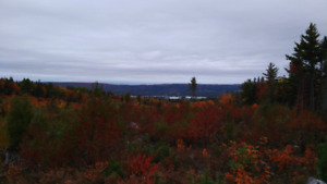 Land in Annapolis valley