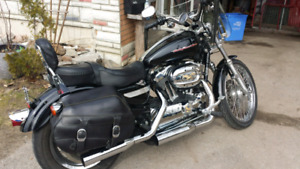 2006 Harley Davidson 1200 custom mint condition