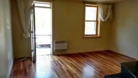 Apt in front of Park LaFontaine Available now