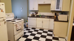 1 Bedroom Apartment in Great Location