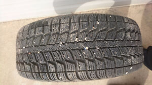 Himalaya Winter studdable tires!