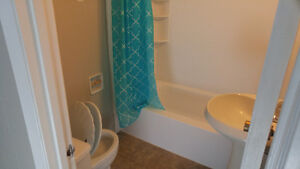2 Bedrooms basement suite, all utilities included