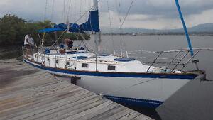 Jamaica Sailing Adventures