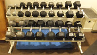 Poids et support / dumbbells with rack